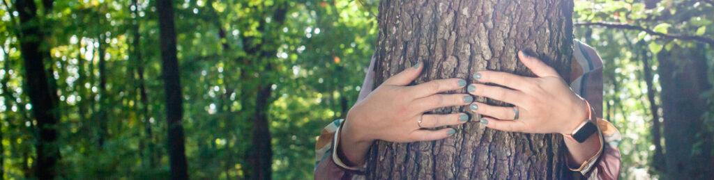 Titelbild. Im Vordergrund ein Baumstamm, der von 2 Händen umschlungen wird.